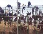 ¿De verdad se están marchando los inmigrantes?<br><span style='color:#006EAF;font-size:12px;'>COMUNIDAD VALENCIANA</span>