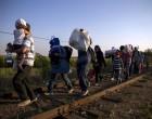 Guerreros de ultraderecha contra los refugiados<br><span style='color:#006EAF;font-size:12px;'>Noticias sobre la invasión que padece Europa. Hablan de nuestro viejo amigo Lazslo Toroczkai</span>
