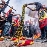 Trapos separatistas que con dinero público y de forma ilegal han impuesto en Cataluña sus políticos, usurpando a la verdadera senyera del Reino de Aragón