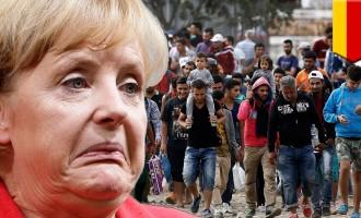 La UE lo reconoce, DN lo avisó ¡¡NO SON REFUGIADOS!!<br><span style='color:#006EAF;font-size:12px;'>INVASIÓN MUSULMANA DE EUROPA</span>