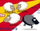 Enriquecimiento multicultural en Valladolid<br><span style='color:#006EAF;font-size:12px;'>¡Basta de inseguridad!</span>