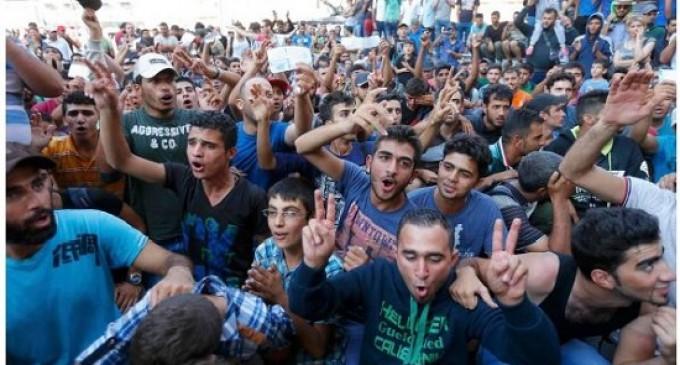 """Dos tercios de los """"refugiados"""" son analfabetos funcionales<br><span style='color:#006EAF;font-size:12px;'>LOS BENEFICIOS DE LA INMIGRACIÓN</span>"""