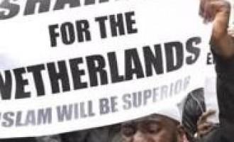 Holanda vota por la islamización<br><span style='color:#006EAF;font-size:12px;'>La formación de Geert Wilders queda en segunda posición en el parlamento.</span>