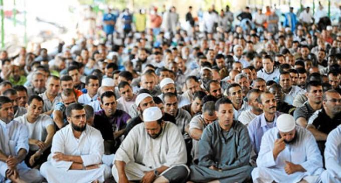 Democracia Nacional exige el cierre de mezquita en San Feliú de Llobregat<br><span style='color:#006EAF;font-size:12px;'>STOP ISLAMIZACIÓN DE CATALUÑA</span>