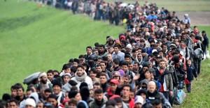 bufale-sui-migranti-Austria-marcia-770x513-2