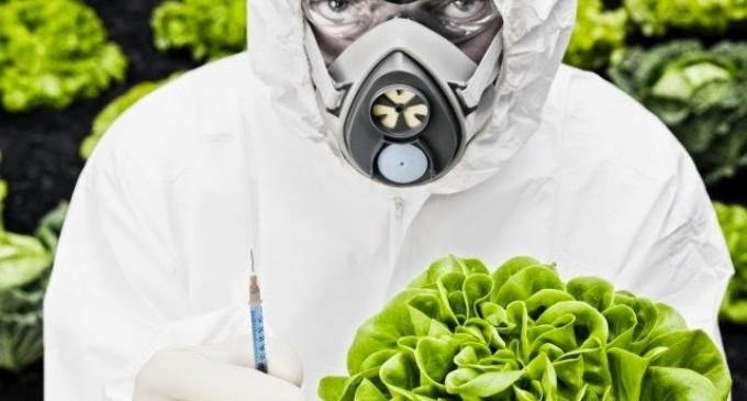 Los alimentos: un poderoso arma de destrucción masiva de seres humanos<br><span style='color:#006EAF;font-size:12px;'>DEBEMOS RECUPERAR NUESTRA SOBERANÍA ALIMENTARIA</span>