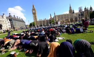 Organización Islámica: los europeos necesitan millones de inmigrantes musulmanes para pagar sus pensiones<br><span style='color:#006EAF;font-size:12px;'>STOP ISLAMIZACIÓN DE EUROPA</span>