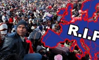 La Unión Europea aceptó más de 500 mil refugiados en 2017<br><span style='color:#006EAF;font-size:12px;'>LA SUSTITUCIÓN DE LOS EUROPEOS SIGUE EN MARCHA</span>