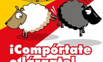 Banda de encapuchados con acento árabe siembra el pánico en Murcia<br><span style='color:#006EAF;font-size:12px;'>LA INMIGRACIÓN MASIVA NOS ESTÁ DESTRUYENDO</span>