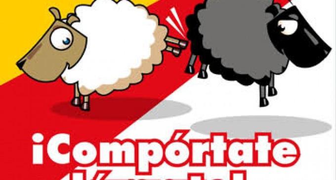 Ecuatorianos matan a español de una paliza<br><span style='color:#006EAF;font-size:12px;'>COMPÓRTATE O LÁRGATE</span>